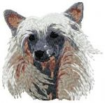 Chinese Crested Dog 4